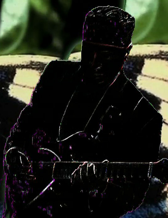 Bruce-Arnold-Guitar-Flutterby-10-1 Asher Electro Hawaiian Slide